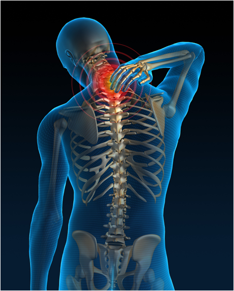 Using Evidence Based Medicine To Treat Patients With Back Or Neck